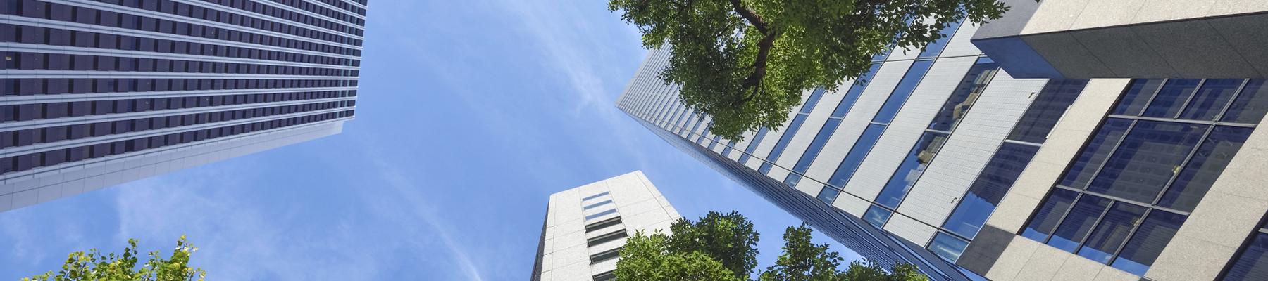 業務改善   マーケティングアカデミー ITS JAPAN LLC